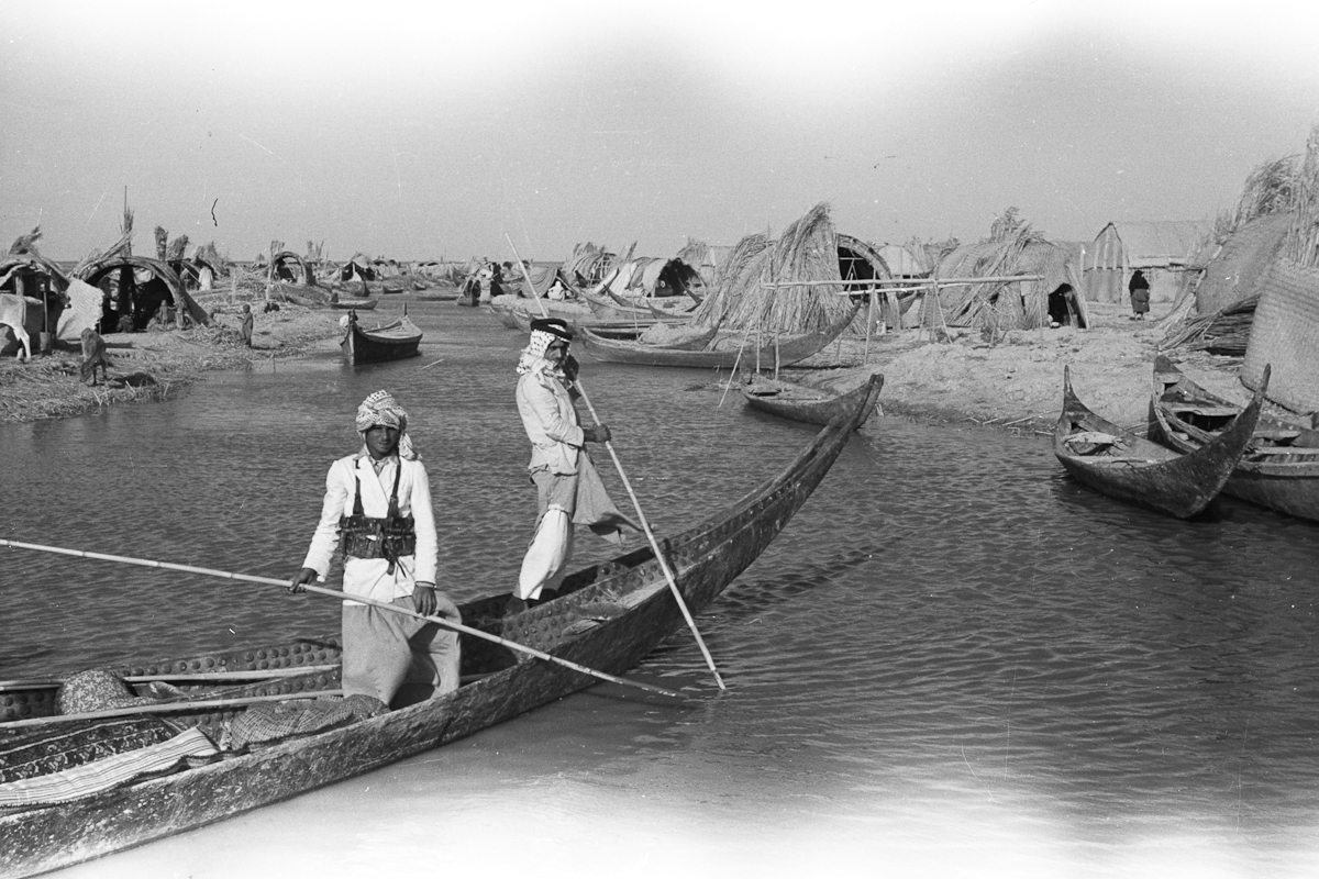 Wilfred Patrick Thesiger, Marsh Arabs, 1950